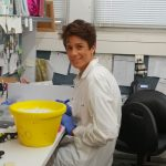 professor sima lev - lab member at work
